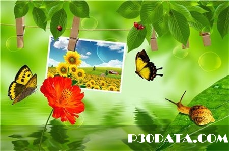 PSD - Green Nature