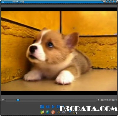 FlvPlayer4Free 4.5.0.0 Portable