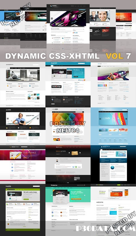 Dynamic CSS XHTML Templates Website Vol7